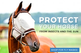 Up to 37% OFF Tack, Equipment and Grooming Supplies at EquestrianCollections.com Ends 8/19